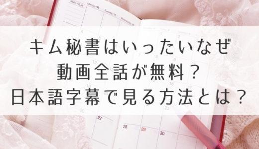 キム秘書はいったいなぜ動画1話2話~最終回を無料視聴!日本語字幕で見る方法は?