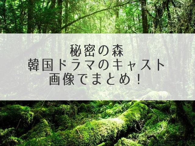 秘密の森相関図キャスト