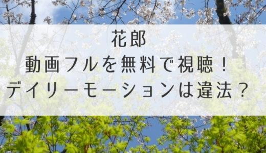 花郎動画1話2話~17話まで日本語字幕で無料視聴する方法!デイリーモーションは見れない?