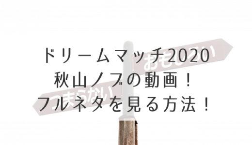 ドリームマッチ2020秋山ノブの動画!フルネタを見る方法!